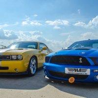 Muscle cars :: Дмитрий Крыжановский
