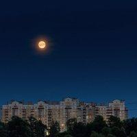 Луна за окном :: Алексей Матвеев