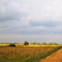 Новая дорога :: Juliya Fokina