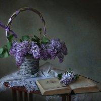 Намокшая воробышком сиреневая ветвь.... :: lady-viola2014 -