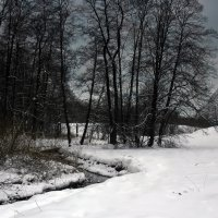 Зимний пейзаж :: Виктория Саванова