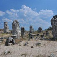 Каменный лес :: Александр Матвеев