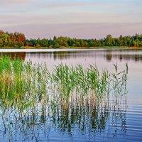 Озеро 1 :: Валерий Талашов