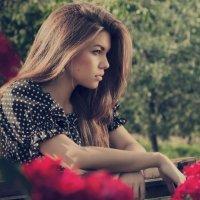 Самая красивая роза... :: Надежда Ревинова