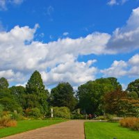 Флора-парк :: Alexander Andronik