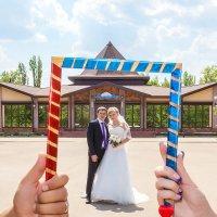 Фото в рамке! :: Светлана Шаповалова