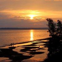 Горьковское водохранилище :: Юлия Гладких
