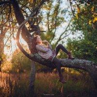 Дети солнца :: Olga Tarasenko