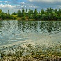 Озеро :: Наталья Гордеева