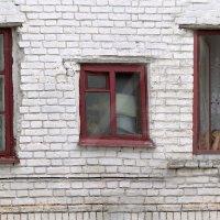 Три окна :: Игорь Чубаров