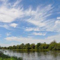 Легкие облака августа :: Диана Задворкина