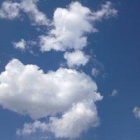 небо над Дніпером :: МищЪя Бульбо