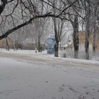 Зимняя прогулка... :: Valeriya Voice
