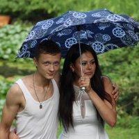 Под дождём... :: Светлана Дмитриева