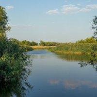 А, у реки... :: Юрий Стародубцев