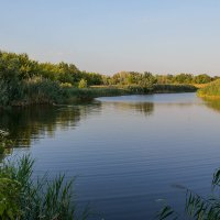 Вечерняя река :: Юрий Стародубцев