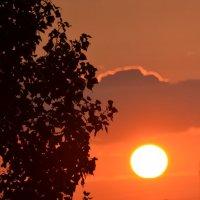 закат :: Олеся Морозова