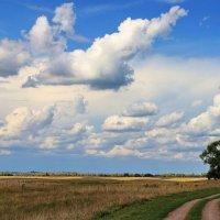 На исходе летних дней... :: Лесо-Вед (Баранов)