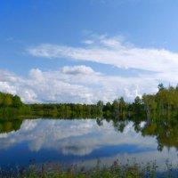 Большая вода\\ наводнение\\ .серия.\\ 2013год :: Николай Сапегин