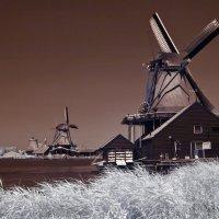 Голландские ветряшки... :: АндрЭо ПапандрЭо