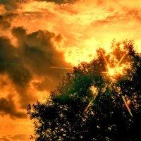 Бурное солнце :: Валерий Талашов