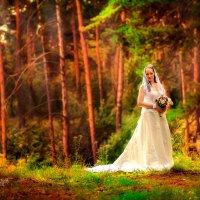 Прогулка перед Венчанием :: Анна Николайчук