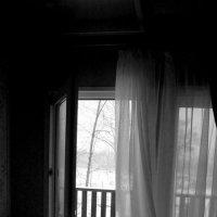 Ветер... :: Maria Drozdova