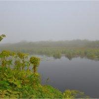 Туман (1) :: Николай Е