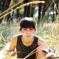Охотничья тропа :: Olga Volkova
