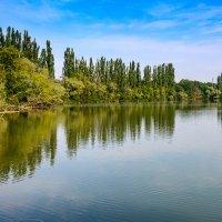 Мы на озеро лесное уходили далеко... :: Геннадий Оробей