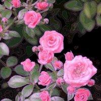 Бабушкин платок.... :: Tatiana Markova