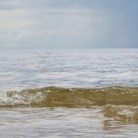 Волна :: Диана Матисоне