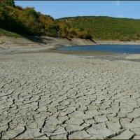 Засуха :: Ольга Голубева