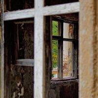 Свет в окне :: Алексей Соминский