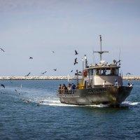 Возвращение с рыбалки :: aqbar aqbar