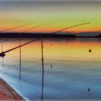 Вечерняя рыбалка :: Андрей Куприянов