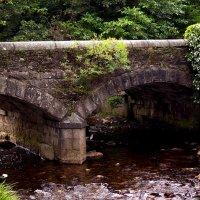 Древний мост... :: juriy luskin