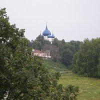 Суздальский пейзаж :: Ирина Борисова