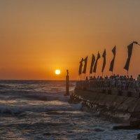 Тель-Авив, Порт. :: Oleg Gendelman
