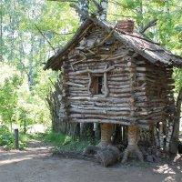...к лесу задом :: Владимир Холодницкий