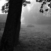 24 августа, утро :: Юрий Бондер