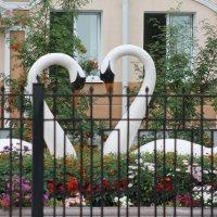 ...лебеди у Загса... :: NюRа;-) Ковылина