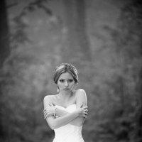 невеста в тумане :: Антон Неупокоев
