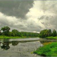 на берегу Рузы :: Дмитрий Анцыферов