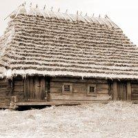 Украина- Национальный музей :: yuri Zaitsev