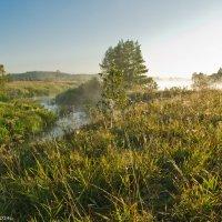 Утро и дымка над рекой. :: Виктор Евстратов