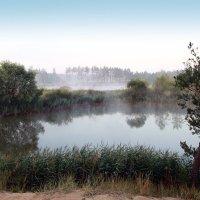 У озера :: Карпухин Сергей