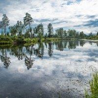 Река Зима :: Светлана