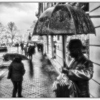 Сегодня в Петербурге дождь... :: tipchik