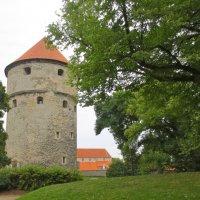 Башня «Кик-ин-де-Кёк» :: Елена